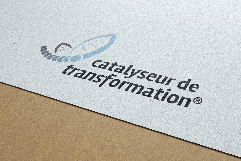 Give You Wings, Studio graphique | Réalisation du logo du réseau Catalyseur de transformation® (2/3)
